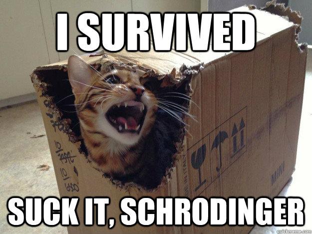 schroedingerscat